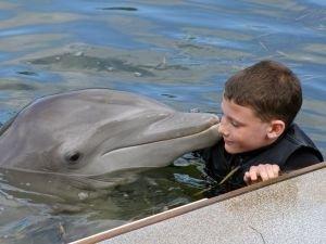 Дельфины - наследники  Атлантиды