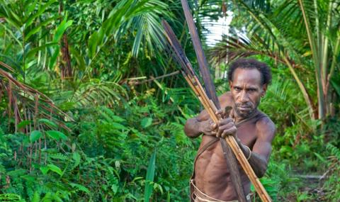 ДОМА НА ДЕРЕВЬЯХ: племя Колуфо