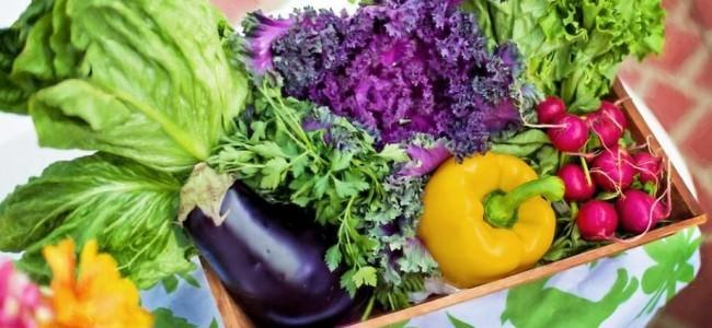 МИФЫ: о здоровом питании