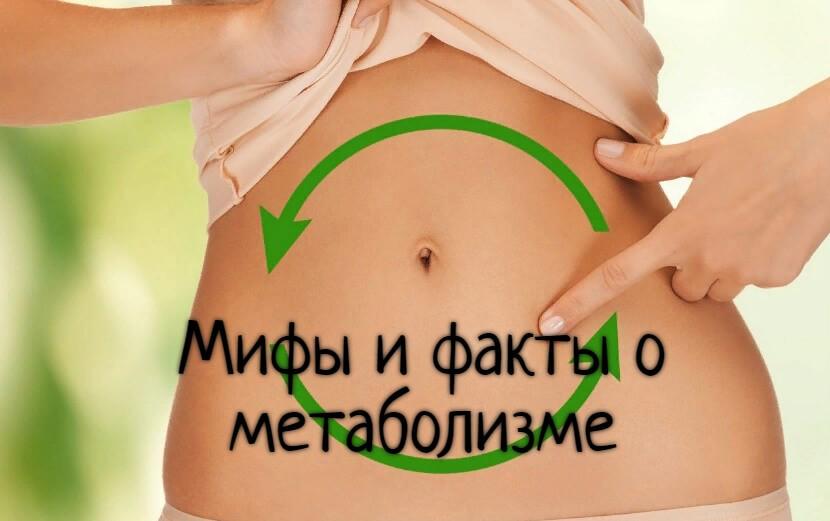 МИФЫ: о метаболизме развеянны