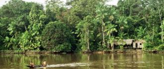 АМАЗОНКА: охраняемый бассейн Бразилии