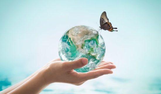 экологический апокалипсис