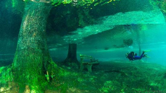 парк под водой